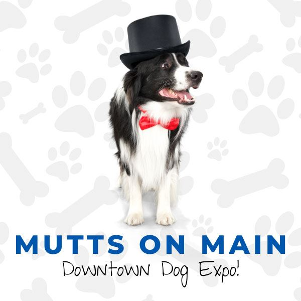 Mutts on Main event graphic